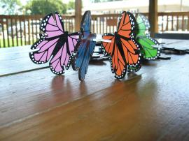 Butterfly Building Materials
